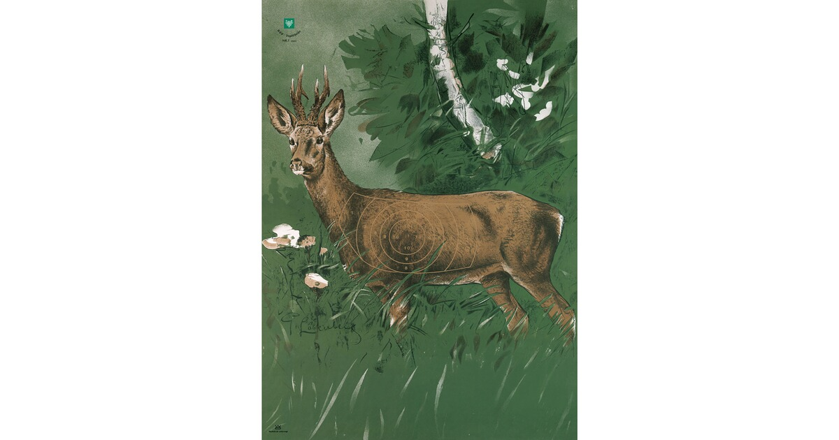 Cibles de chasse brocard brocard am nagement du - Equipement de chasse ...