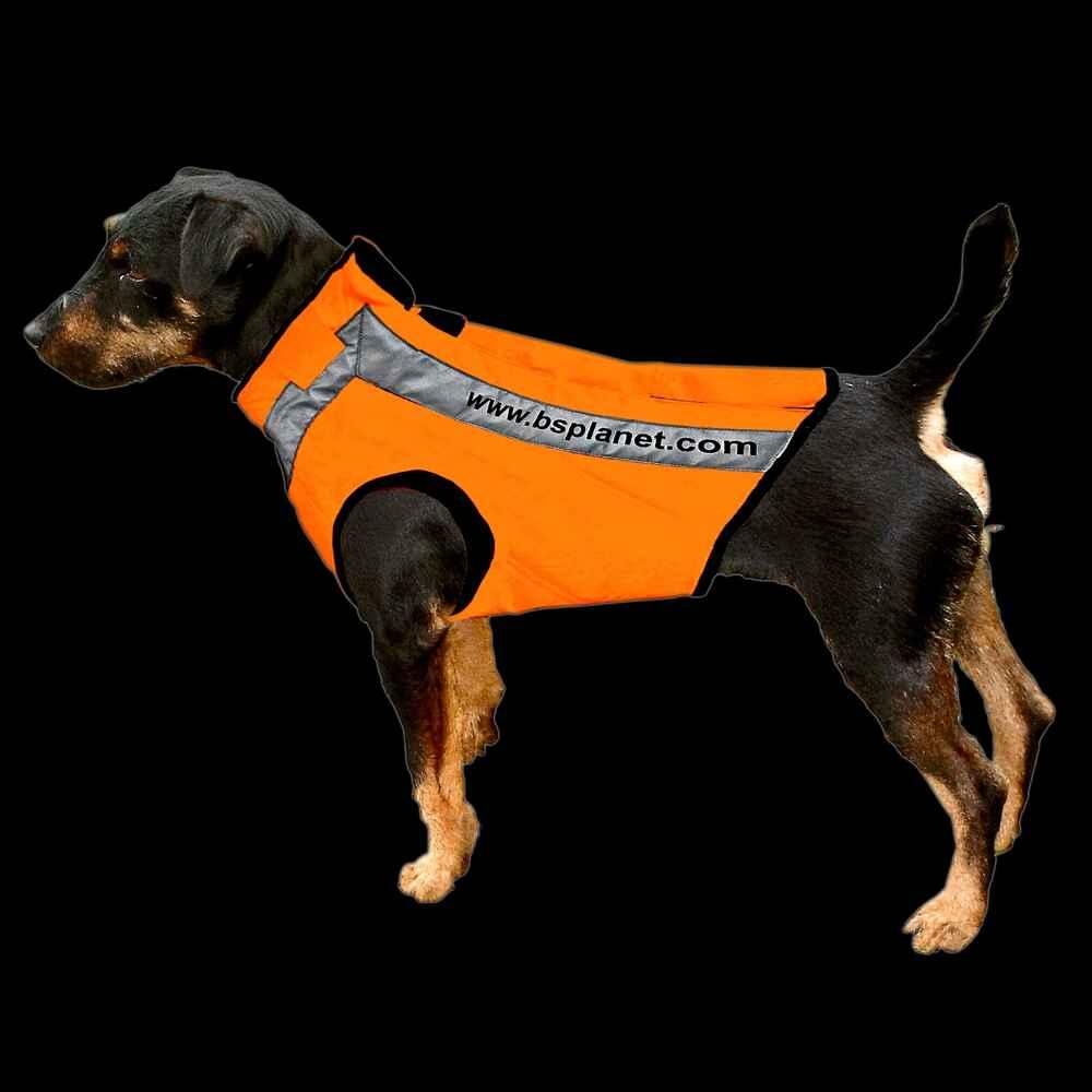 bs planet gilet de protection pour chien version 2xl orange pour femelle colliers harnais. Black Bedroom Furniture Sets. Home Design Ideas